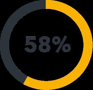 58 % icon