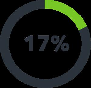 17 % icon